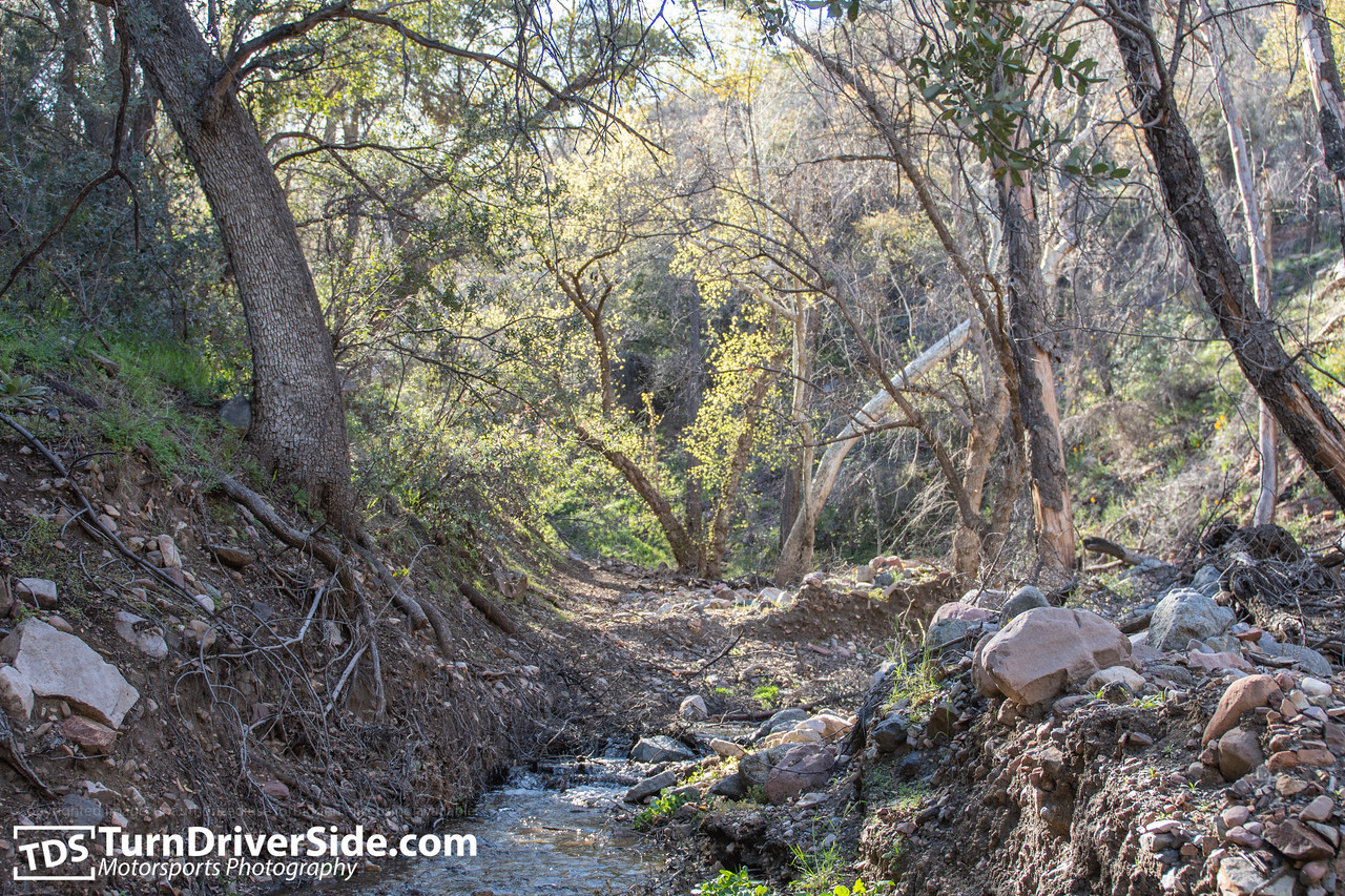 Arizona Cherry Creek FR Forest Road 203 D50 5187 X2