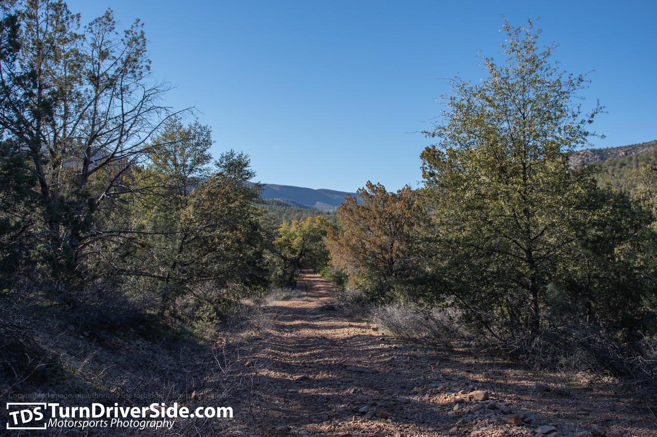 Arizona Cherry Creek FR Forest Road 203 D50 5191 X2