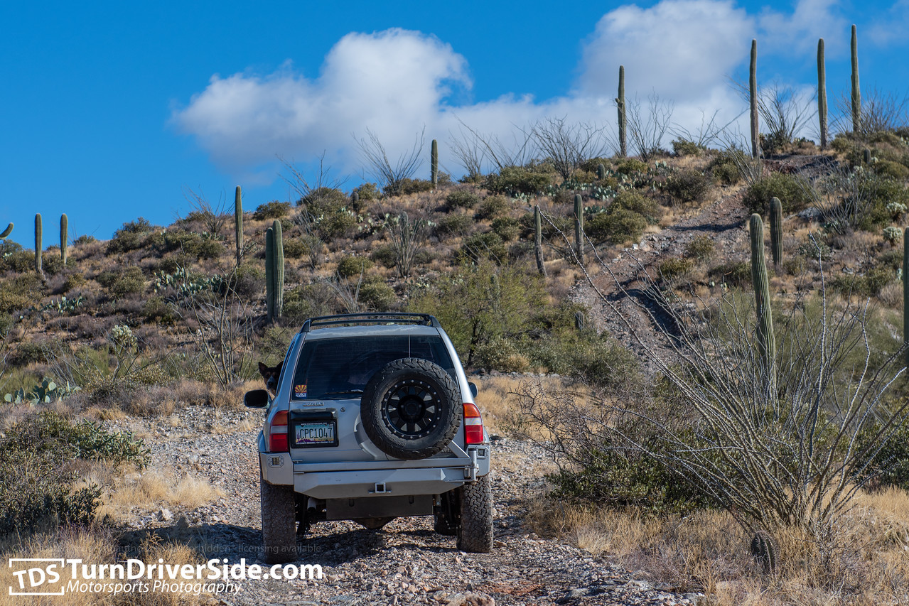 Sebastian's Suzuki Grand Vitara on the Pucker Ridge Trail outside of Superior, AZ.